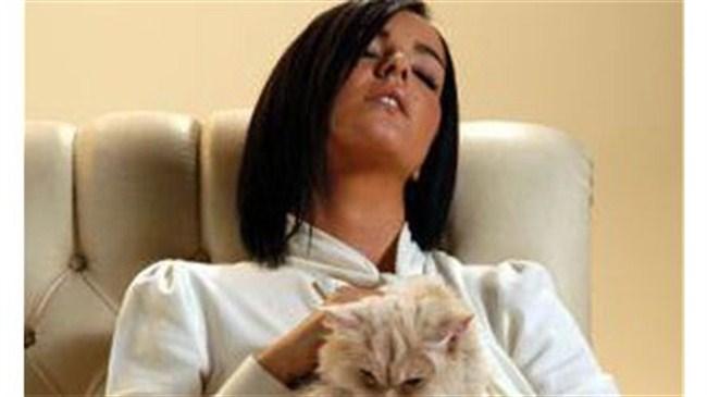 Kediye klip işkencesi